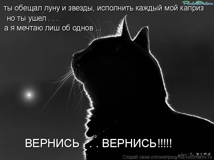 Котоматрица: ты обещал луну и звезды, исполнить каждый мой каприз но ты ушел . . .  а я мечтаю лиш об однов ... ВЕРНИСЬ . . . ВЕРНИСЬ!!!!!