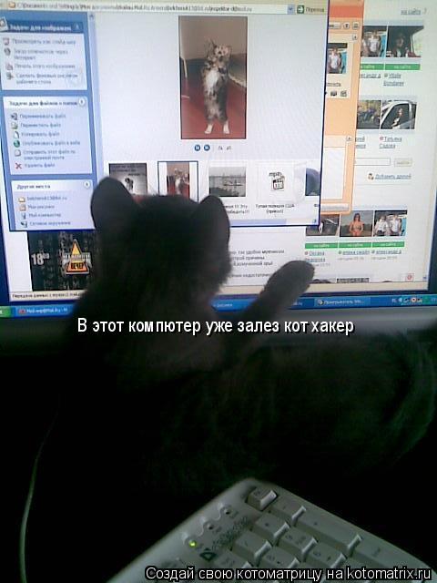 Котоматрица: В этот компютер уже залез кот хакер