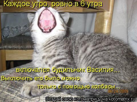 Котоматрица: Каждое утро, ровно в 6 утра включался будильник Василия... Выключить его было можно  только с помощью колбасы...