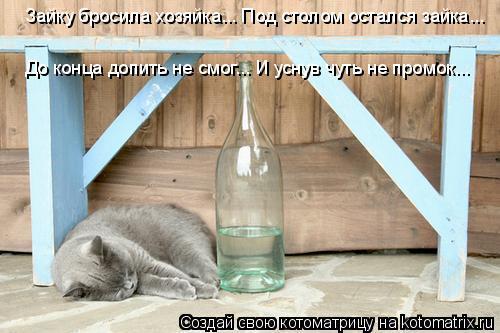Котоматрица: Зайку бросила хозяйка... Под столом остался зайка...   До конца допить не смог... И уснув чуть не промок...