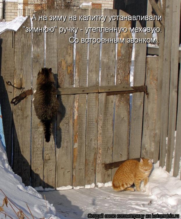 """Котоматрица: А на зиму на калитку устанавливали """"зимнюю"""" ручку - утепленную меховую. Со встроенным звонком.."""