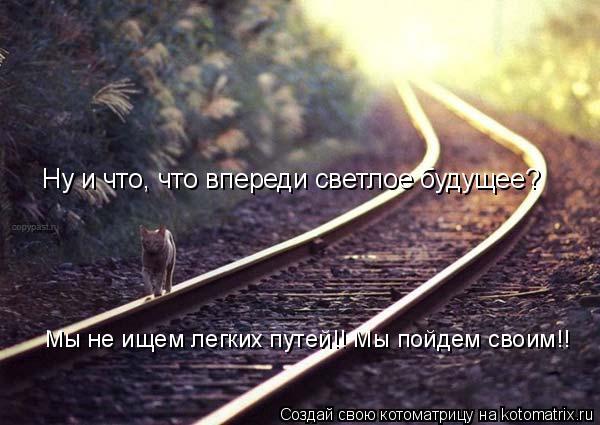 Котоматрица: Ну и что, что впереди светлое будущее? Мы не ищем легких путей!! Мы пойдем своим!!