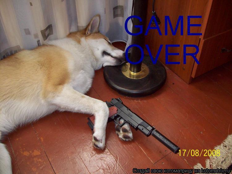 Котоматрица: GAME OVER