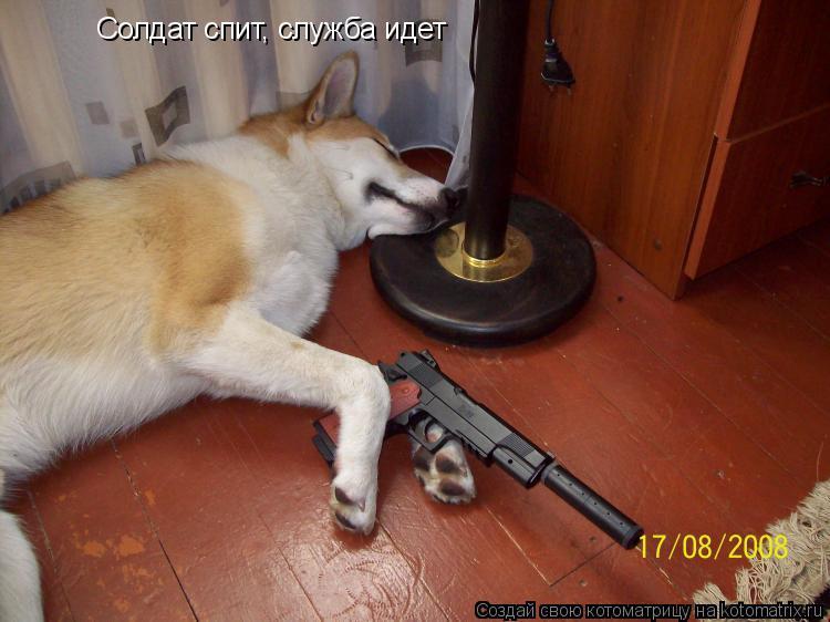 Котоматрица: Солдат спит, служба идет