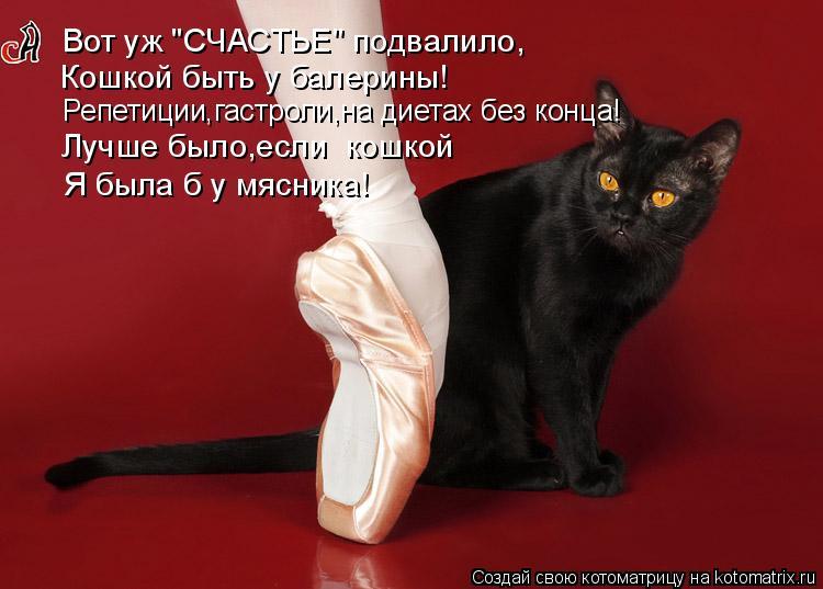 """Котоматрица: Вот уж """"СЧАСТЬЕ"""" подвалило, Кошкой быть у балерины! Репетиции,гастроли,на диетах без конца! Лучше было,если  кошкой Я была б у мясника!"""