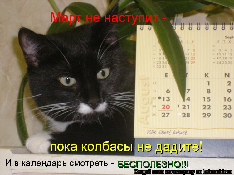 Котоматрица: Март не наступит - пока колбасы не дадите! И в календарь смотреть - БЕСПОЛЕЗНО!!!