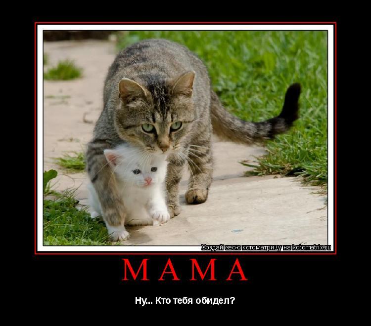 Котоматрица: Мама Ну... Кто тебя обидел?