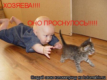 Котоматрица: ХОЗЯЕВА!!!! ОНО ПРОСНУЛОСЬ!!!!!
