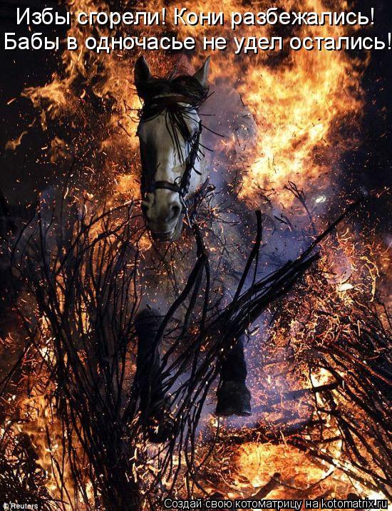 Котоматрица: Избы сгорели! Кони разбежались! Бабы в одночасье не удел остались!
