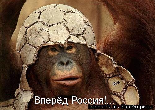 Котоматрица: Вперёд Россия!...