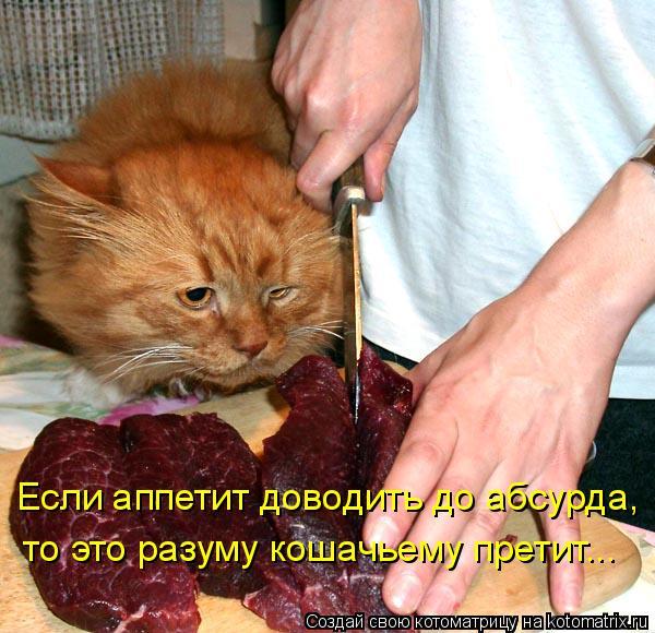 Котоматрица: Если аппетит доводить до абсурда, то это разуму кошачьему претит...