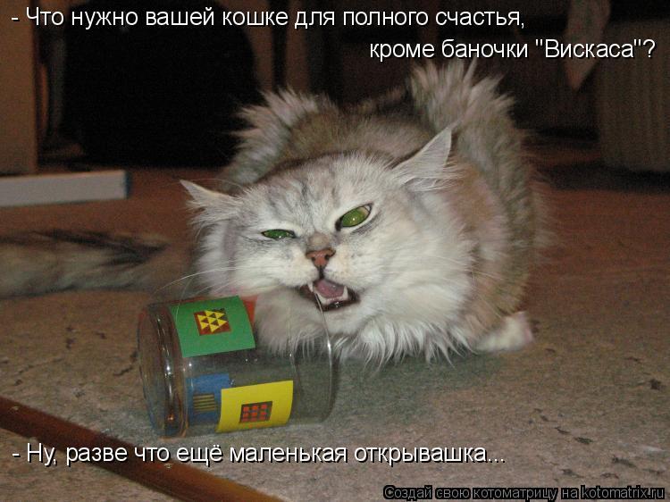 """Котоматрица: - Что нужно вашей кошке для полного счастья, кроме баночки """"Вискаса""""? - Ну, разве что ещё маленькая открывашка..."""