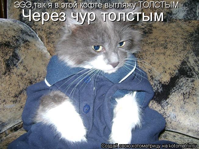 Котоматрица: ЭЭЭ,так я в этой кофте выгляжу ТОЛСТЫМ Через чур толстым