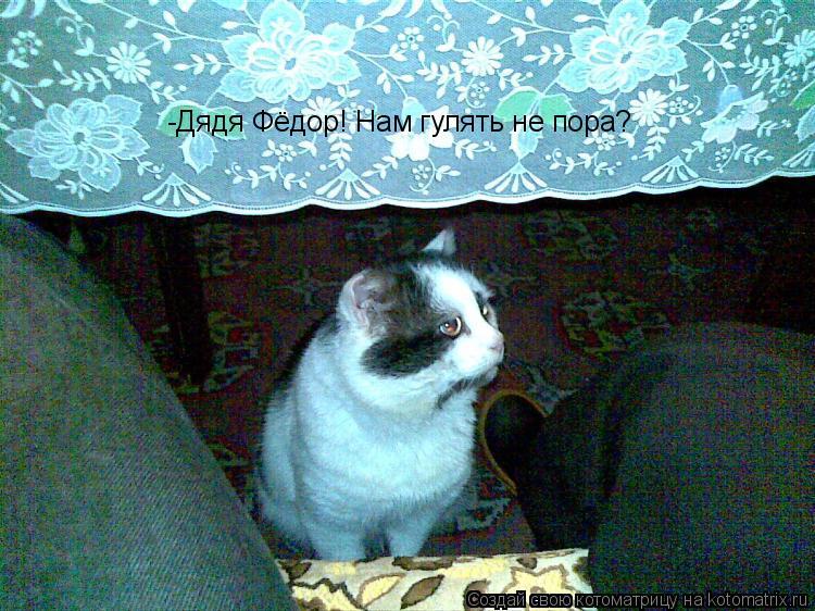 Котоматрица: -Дядя Фёдор! Нам гулять не пора?