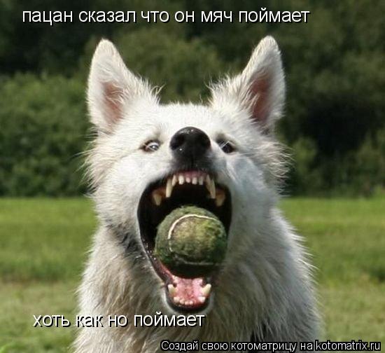 Котоматрица: пацан сказал что он мяч поймает хоть как но поймает