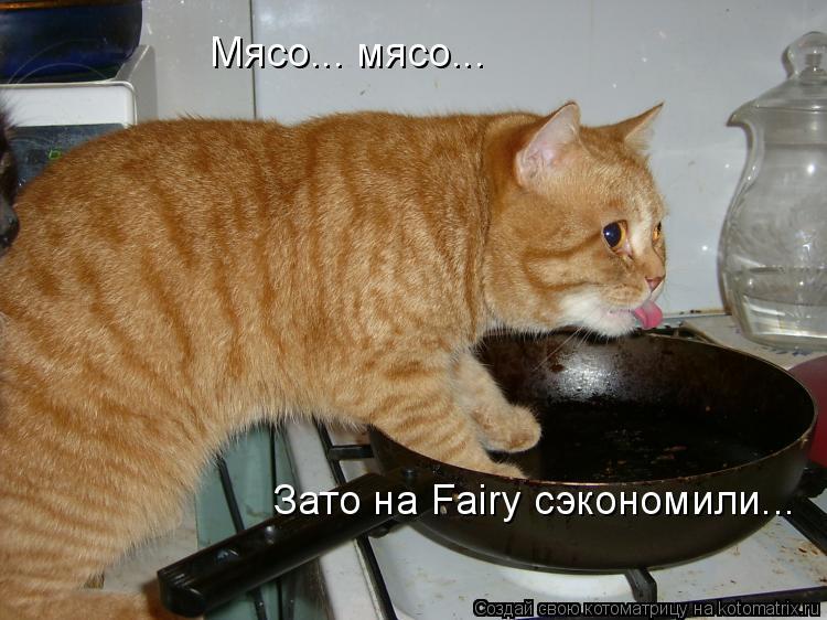 Котоматрица: Зато на Fairy сэкономили... Мясо... мясо...