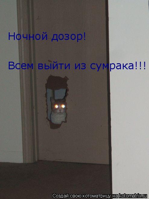 Котоматрица: Всем выйти из сумрака!!!                                                                                     Ночной дозор!