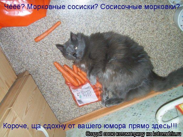 Котоматрица: Чёёё? Морковные сосиски? Сосисочные морковки? Короче, ща сдохну от вашего юмора прямо здесь!!!