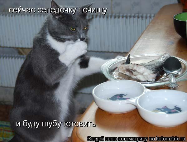 Котоматрица: сейчас селедочку почищу и буду шубу готовить