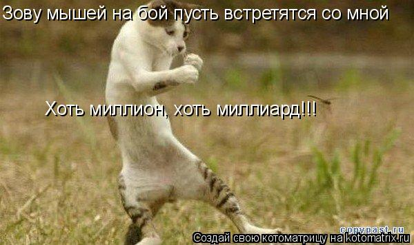 Котоматрица: Зову мышей на бой пусть встретятся со мной Хоть миллион, хоть миллиард!!!