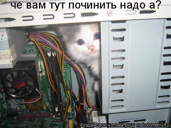 Котоматрица: че вам тут починить надо а?