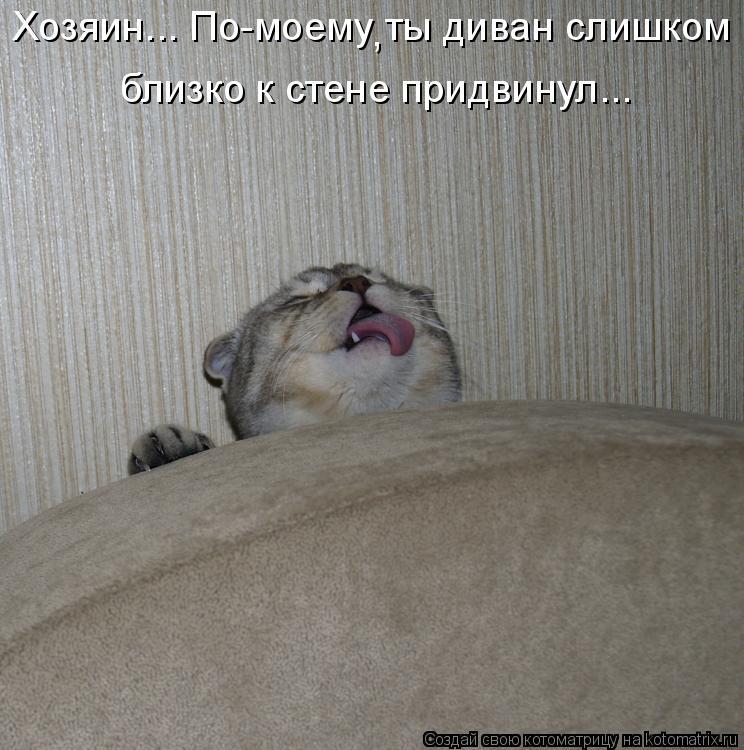 Котоматрица: Хозяин... По-моему ты диван слишком  близко к стене придвинул... ,