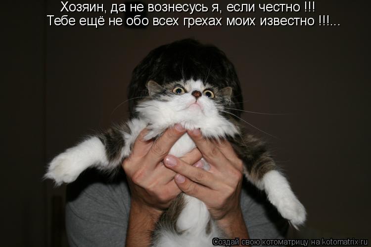 Котоматрица: Хозяин, да не вознесусь я, если честно !!! Тебе ещё не обо всех грехах моих известно !!!...