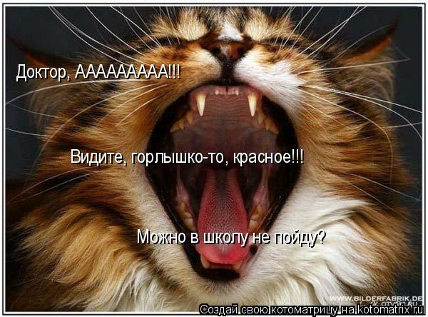 Котоматрица: Доктор, ААААААААА!!! Видите, горлышко-то, красное!!! Можно в школу не пойду?