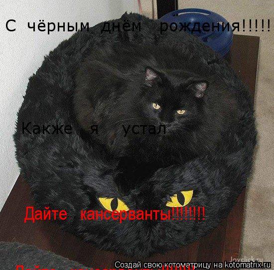 Котоматрица: С  чёрным  днём   рождения!!!!!!!!!!!! Какже   я    устал Дайте   кансерванты!!!!!!!! Дайте   кансерванты!!!!!!!!