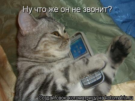 Котоматрица: Ну что же он не звонит?