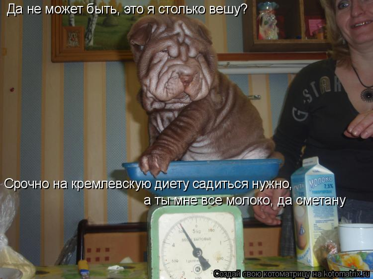 Котоматрица: Да не может быть, это я столько вешу? Срочно на кремлевскую диету садиться нужно,  а ты мне все молоко, да сметану