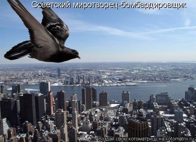 Котоматрица: Советский миротворец-бомбардировщик