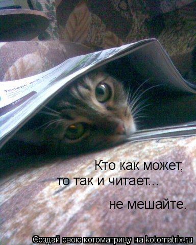 Котоматрица: Кто как может,  то так и читает... не мешайте.