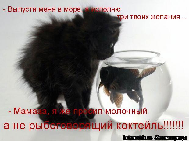 Котоматрица: а не рыбоговорящий коктейль!!!!!!! - Выпусти меня в море, я исполню  три твоих желания... - Мамааа, я же просил молочный