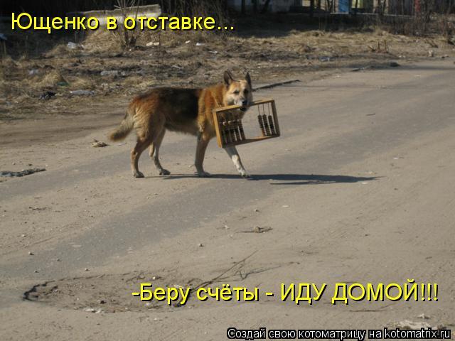 Котоматрица: Ющенко в отставке... -Беру счёты - ИДУ ДОМОЙ!!!