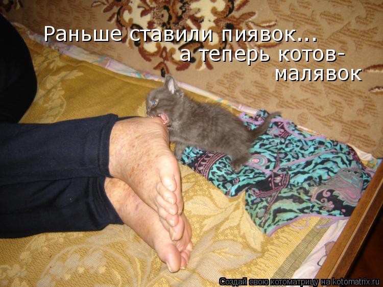 Котоматрица: Раньше ставили пиявок... а теперь котов- малявок