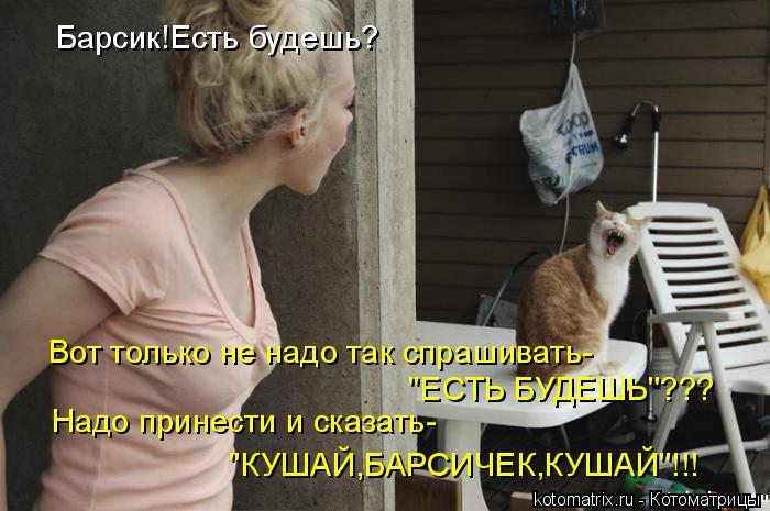 Котоматрица: Барсик!Есть будешь? Вот только не надо так спрашивать- 'ЕСТЬ БУДЕШЬ'??? Надо принести и сказать- 'КУШАЙ,БАРСИЧЕК,КУШАЙ'!!!