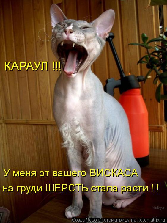 Котоматрица: КАРАУЛ !!! У меня от вашего ВИСКАСА на груди ШЕРСТЬ стала расти !!!