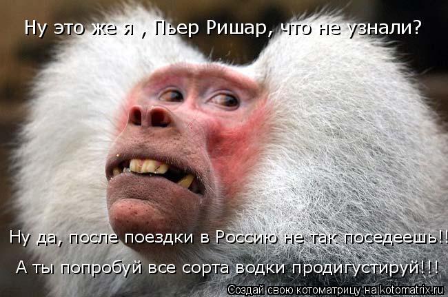 Котоматрица: Ну это же я , Пьер Ришар, что не узнали? Ну да, после поездки в Россию не так поседеешь!!! А ты попробуй все сорта водки продигустируй!!!