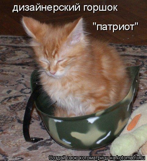 """Котоматрица: дизайнерский горшок """"патриот"""""""