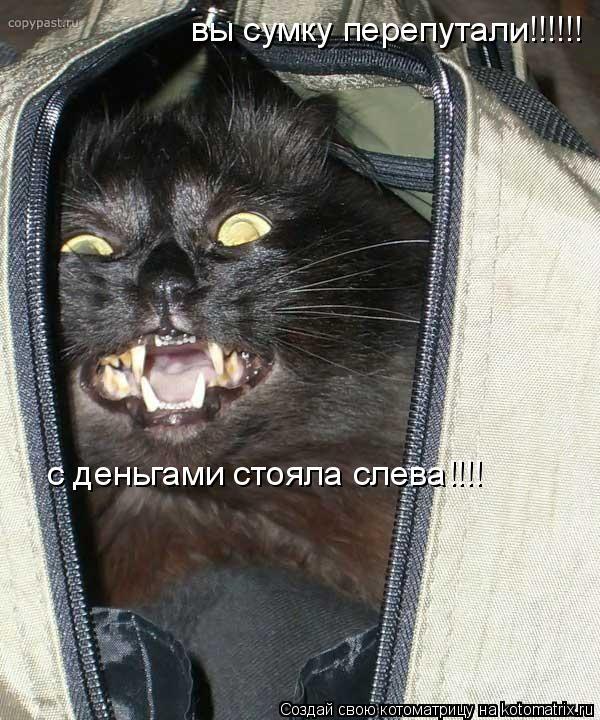 Котоматрица: вы сумку перепутали!!!!!! с деньгами стояла слева!!!!
