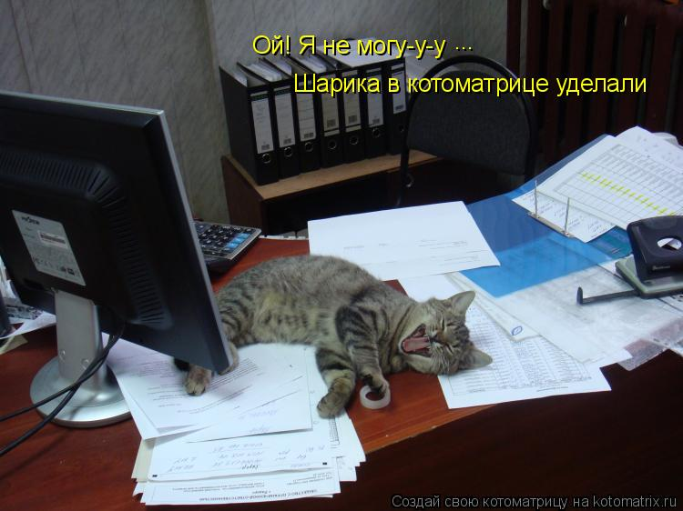 Котоматрица: Ой! Я не могу-у-у ... Шарика в котоматрице уделали