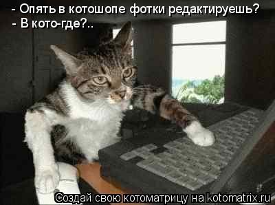 Котоматрица: - Опять в котошопе фотки редактируешь? - В кото-где?..