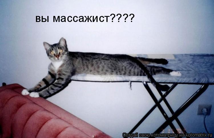 Котоматрица: вы массажист????