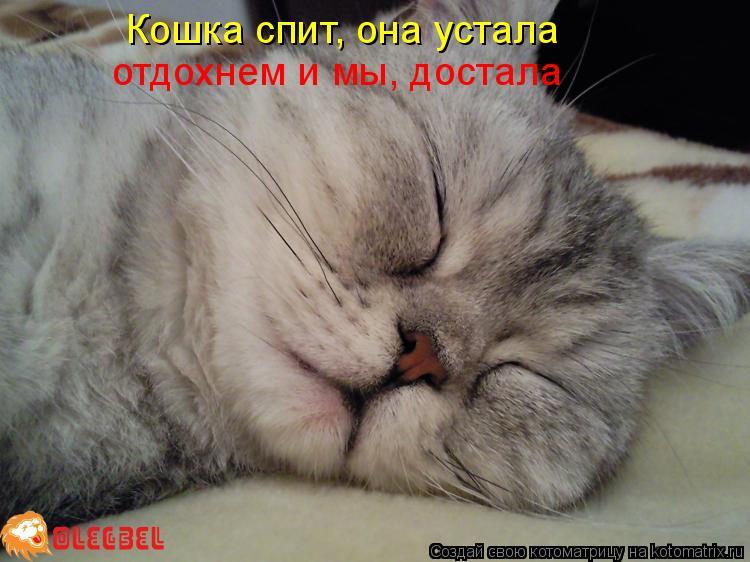 кошка она хочет спать слова вязаного текстиля для