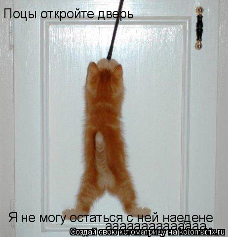 Котоматрица: Поцы откройте дверь Я не могу остаться с ней наедене аааааааааааааа