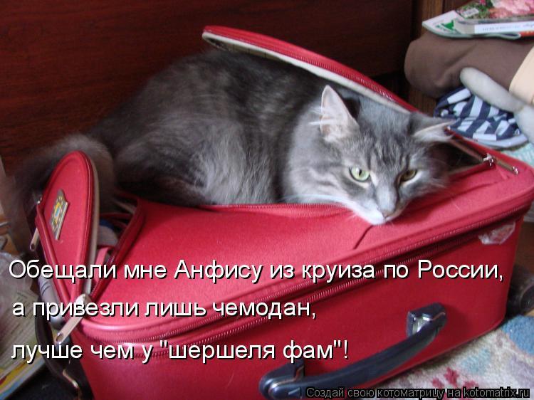 """Котоматрица: Обещали мне Анфису из круиза по России, а привезли лишь чемодан,  лучше чем у """"шершеля фам""""!"""