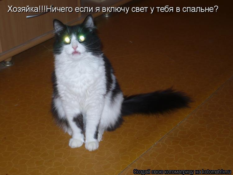 Котоматрица: Хозяйка!!!Ничего если я включу свет у тебя в спальне?
