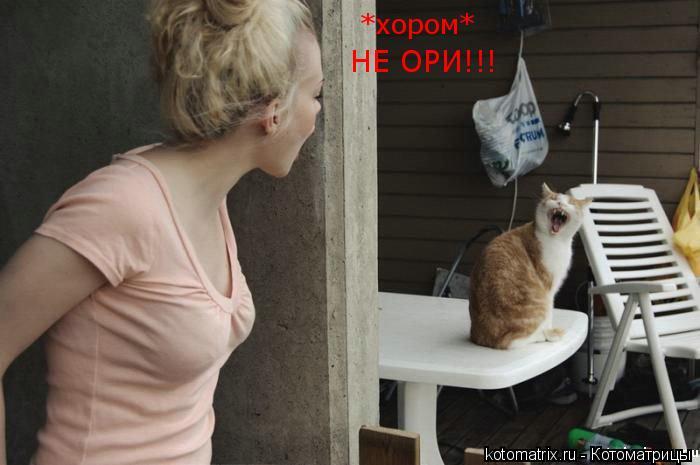 Котоматрица: *хором* НЕ ОРИ!!!