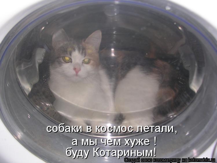 Котоматрица: собаки в космос летали, а мы чем хуже ! буду Котариным!